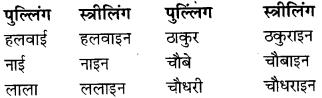 RBSE Class 9 Hindi व्याकरण लिंग 6