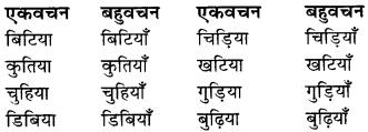 RBSE Class 9 Hindi व्याकरण वचन 6