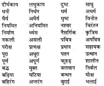 RBSE Class 9 Hindi व्याकरण विलोम या विपरीतार्थक शब्द 2