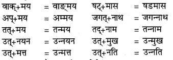 RBSE Class 9 Hindi व्याकरण सन्धि 5