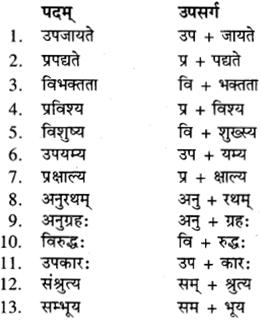 RBSE Class 9 Sanskrit व्याकरण उपसर्ग-प्रकरणम् 10