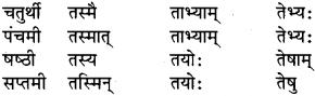 RBSE Class 9 Sanskrit व्याकरण रूप-प्रकरणम् 17
