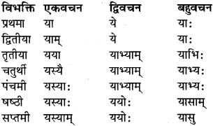 RBSE Class 9 Sanskrit व्याकरण रूप-प्रकरणम् 36