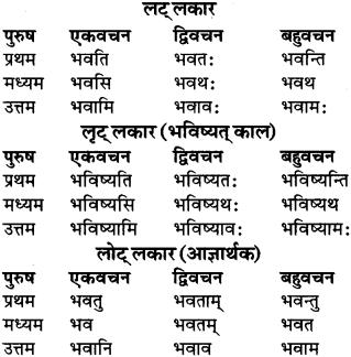 RBSE Class 9 Sanskrit व्याकरण रूप-प्रकरणम् 41