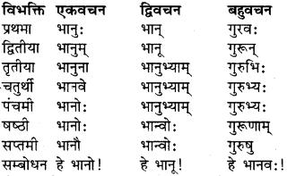 RBSE Class 9 Sanskrit व्याकरण रूप-प्रकरणम् 4