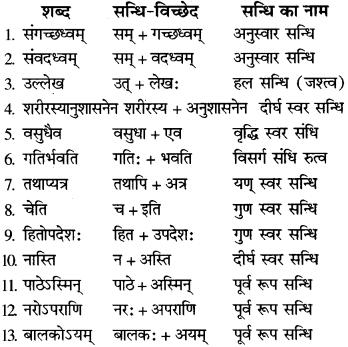RBSE Class 9 Sanskrit व्याकरण सन्धि-प्रकरणम् 9