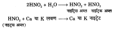 RBSE Solutions for Class 12 Biology Chapter 10 Q.2.2