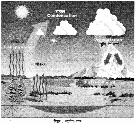 RBSE Solutions for Class 11 Physical Geography Chapter 17 जलीय चक्र एवं जलराशियों का वितरण 1
