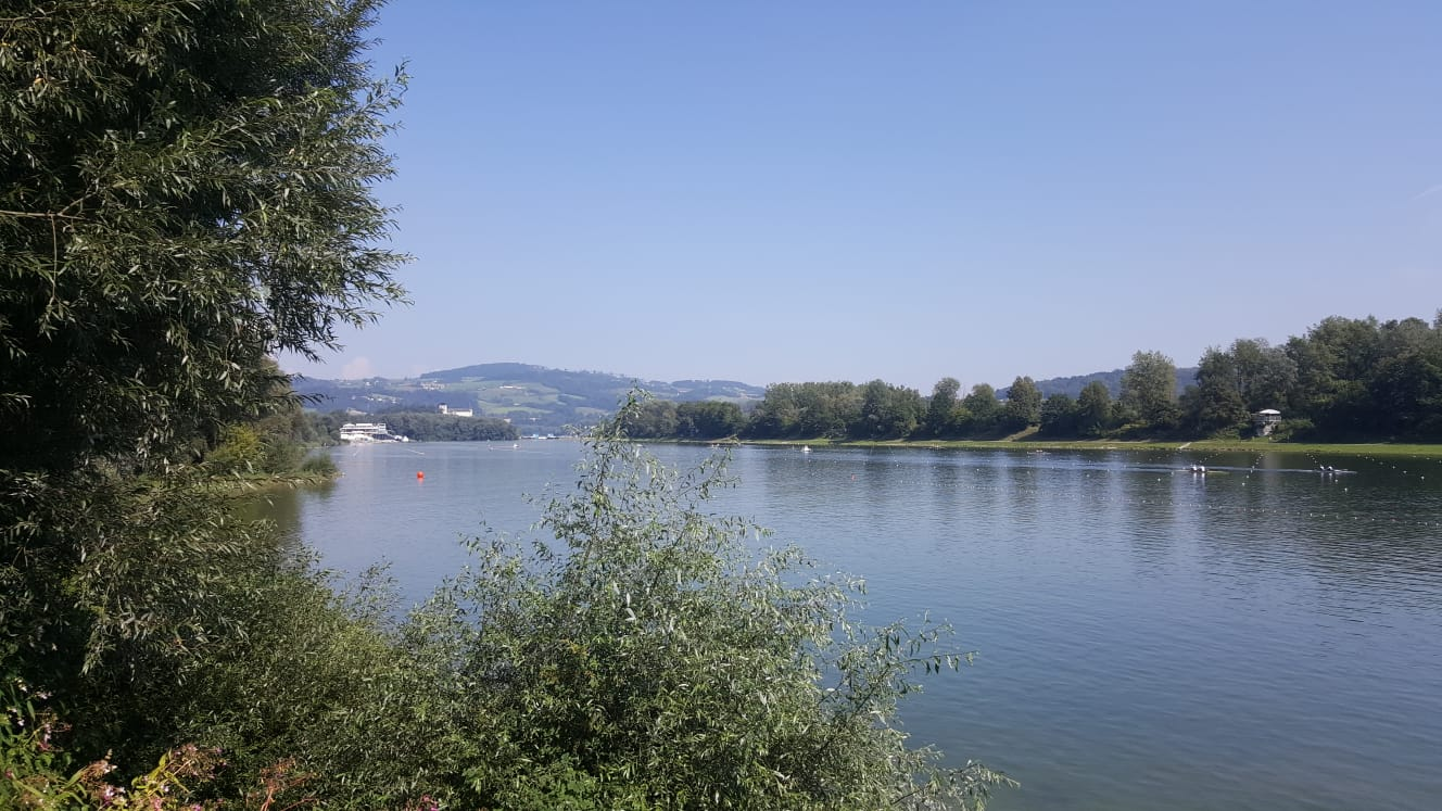 Der RCS bei der Ruder-WM in Linz-Ottensheim vertreten: Ein Zwischenbericht von Volunteer Hannah Herzig