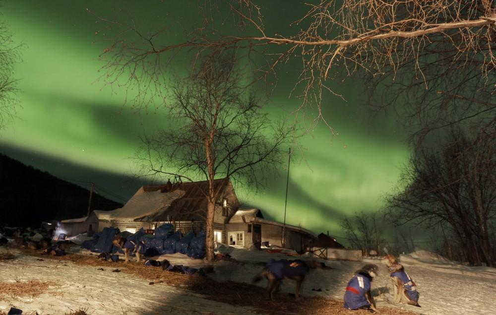 Northern Lights Eye Care