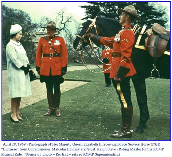 Photograph of Queen Elizabeth II receiving her first RCMP horse - Burmese