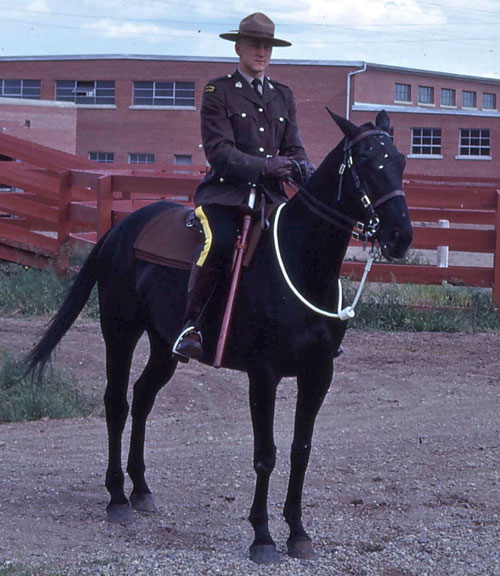 """Photograph of Constable Fred Stark on horseback at """"Depot"""" Division in 1962 (Source of photo - Ric Hall's Photo Collection)"""