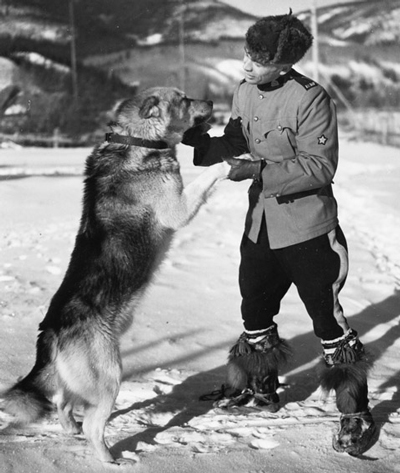 Photograph of an RCMP Police Service Dog and the handler (Source of photo - Ric Hall's Photo Corner).