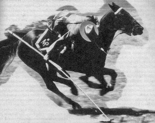 Photograph of RCMP mounted member