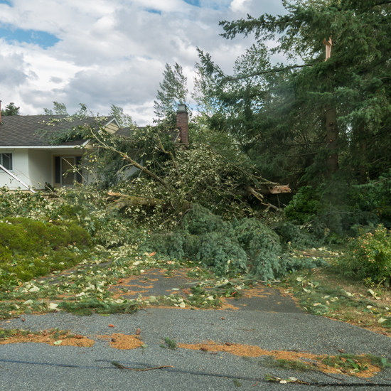 August 29, 2015 - House damaged from fallen tree.