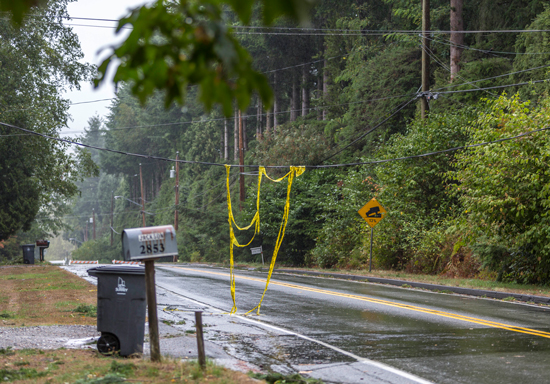 August 29, 2015 - Photograph of a downed power line on 168 Street in south Surrey, B.C.