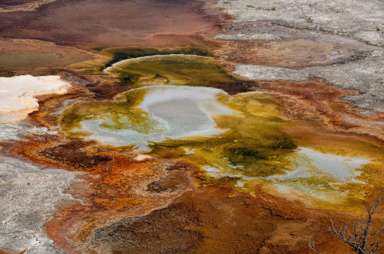Yellowstone_786-DSC_0906_08-13-2015_162042