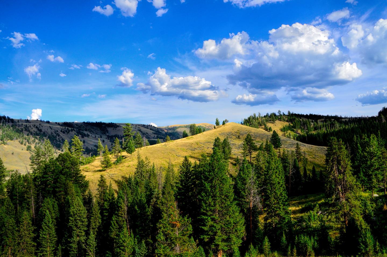 Yellowstone_787-DSC_0921_08-13-2015_171818