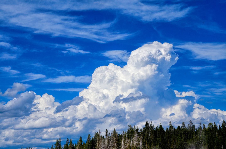 Yellowstone_796-DSC_1529_08-14-2015_143216