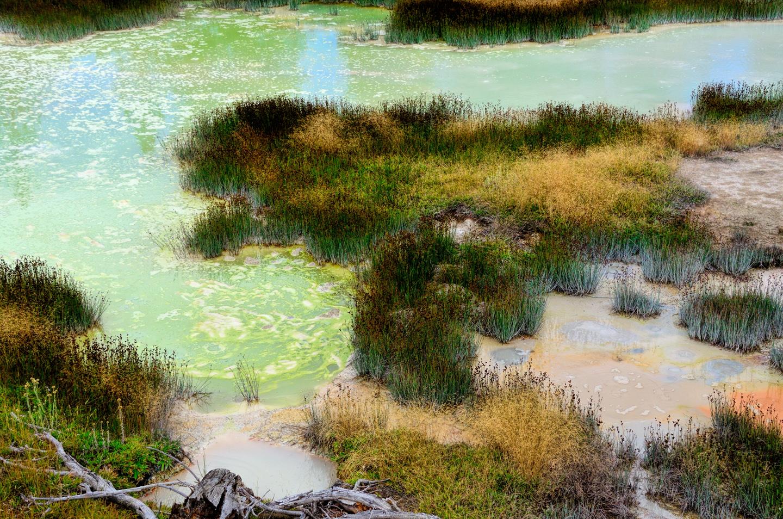 Yellowstone_797-DSC_1651_08-14-2015_160215
