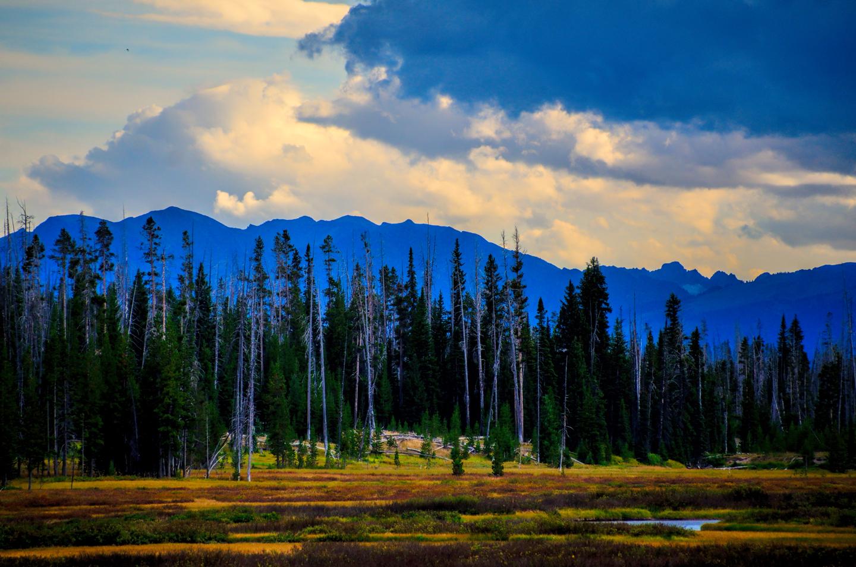 Yellowstone_798-DSC_1675_08-14-2015_164711