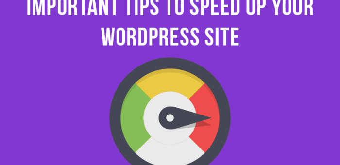 Optimize WordPress— Top 6 important tips to speed up your WordPress site
