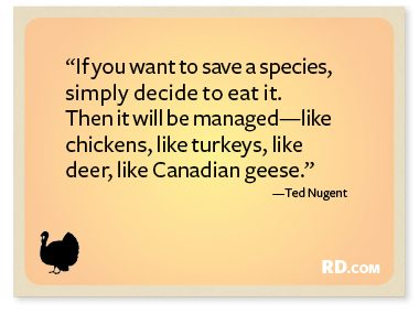 http://www.rd.com/slideshows/9-funny-thanksgiving-quotes/?trkid=NL-RANDOM-111912&epid=9BFEF664-2851-44AB-9FC2-28A7C93280E7#slide10