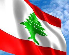 The Universal Periodic Review, Lebanon 2015: Civil Society Reports