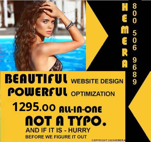 An image of a beautiful woman poolside on a sunny day she has long brunette curly hair and below her the ad reads - beautiful website design and powerful SEO all-in-one package for 1295.00