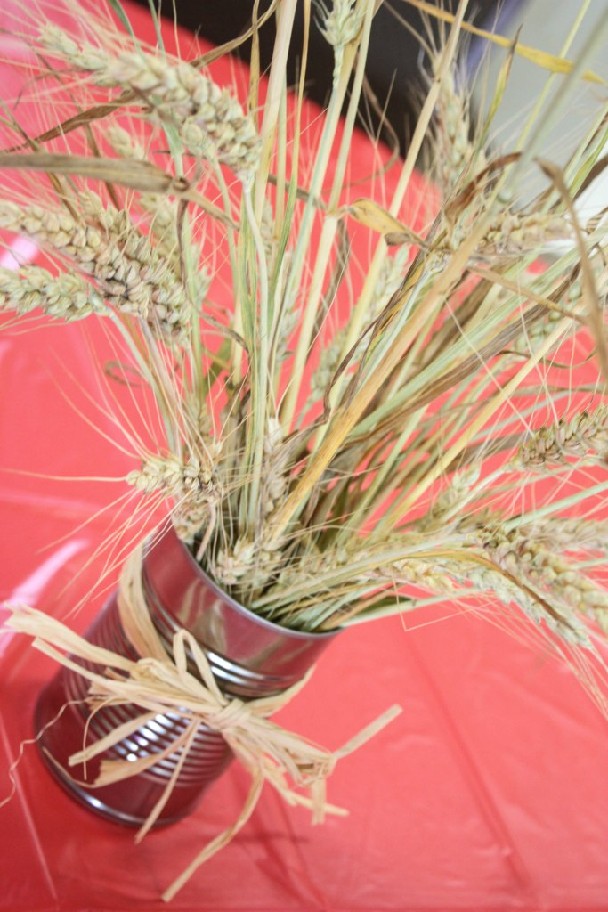 Barnyard birthday party wheat in a can