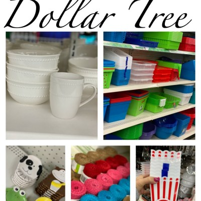 Dollar Tree Craft Supplies and Decor Items