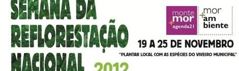 Montemor-o-novo incentiva a reflorestação e a prevenção dos resíduos