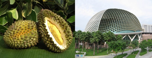 Best examples of Buildings inspired by Animals