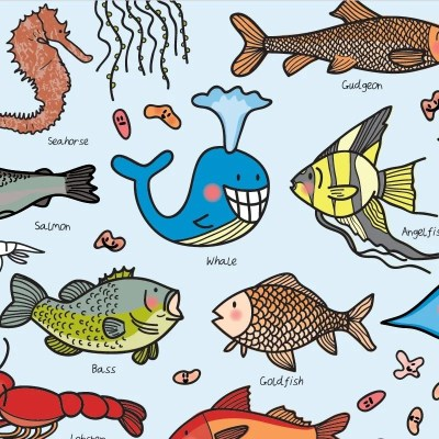 Re-wrapped: ECO Friendly Wrapping Paper Fish for Children by Rosie Parkinson made from 100% Unbleached Recycled Paper