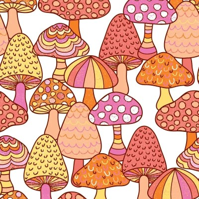 Re-wrapped: ECO Friendly Birthday Wrapping Paper Marvellous Mushrooms by Rosie Parkinson made from 100% Unbleached Recycled Paper