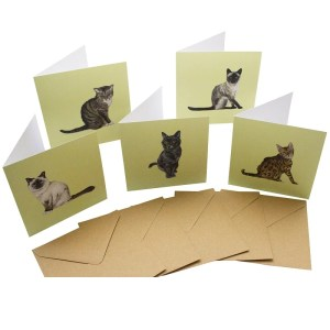 Re-wrapped: ECO Friendly Birthday Wrapping Paper Cat Breeds Large Pack Greetings Card by Sophie Botsford made from 100% Unbleached Recycled Card
