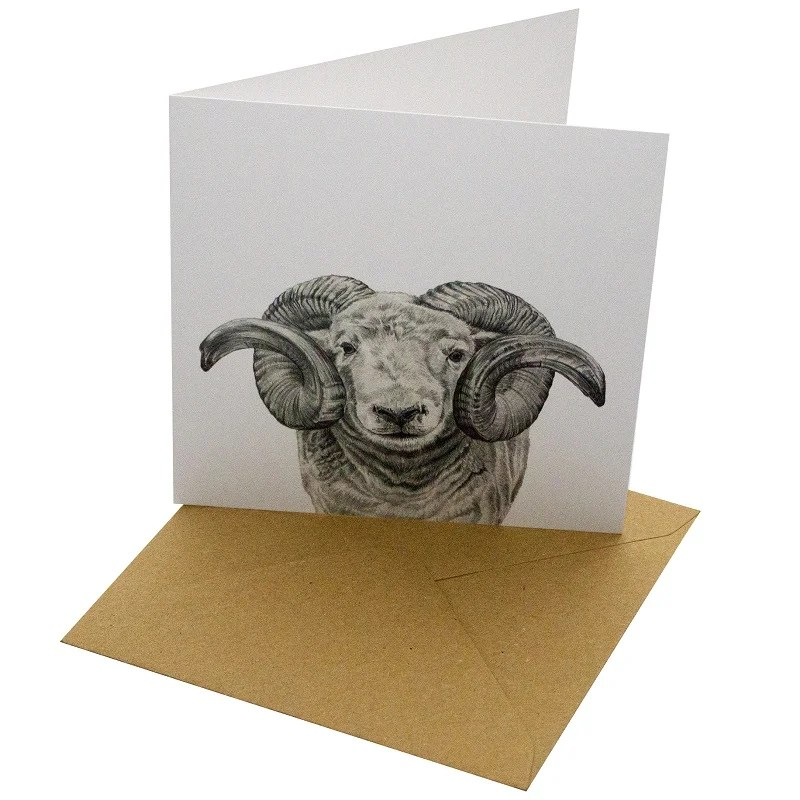 Re-wrapped: ECO Friendly Birthday Wrapping Paper Pen Ram Greetings Card by Sophie Botsford made from 100% Unbleached Recycled Card
