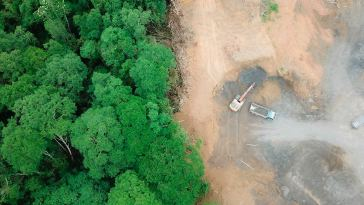 UK Proposes Law to Reduce Deforestation Consultation supply chain