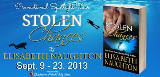 Stolen Chances Blog Tour Banner
