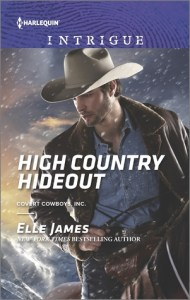 Harlequin October Spotlight…Q&A & 10 Steps to Publishing by Elle James, author of High Country Hideout
