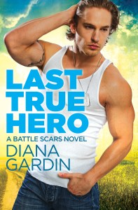 Last True Hero by Diana Gardin….Teaser Blast