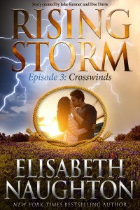 Rising Storm Episode 3: Crosswinds by Elisabeth Naughton…ARC Review