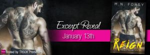 Reign by M.N. Forgy….Excerpt Reveal