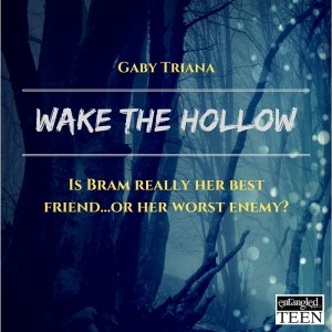 Wake The Hollow3