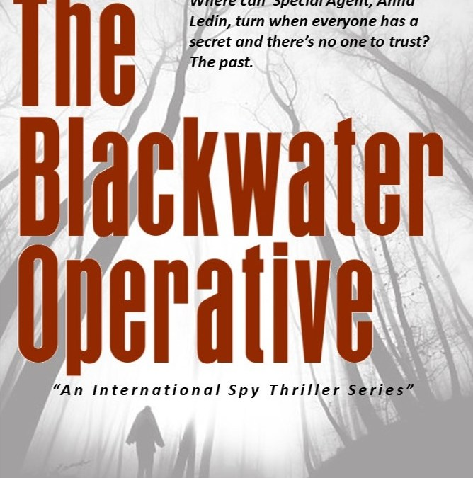 readersmagnet - The Black Water Operative