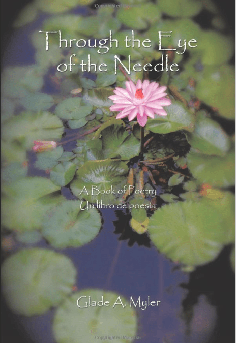Through the Eye of the Needle_A Book of Poetry - Book Cover