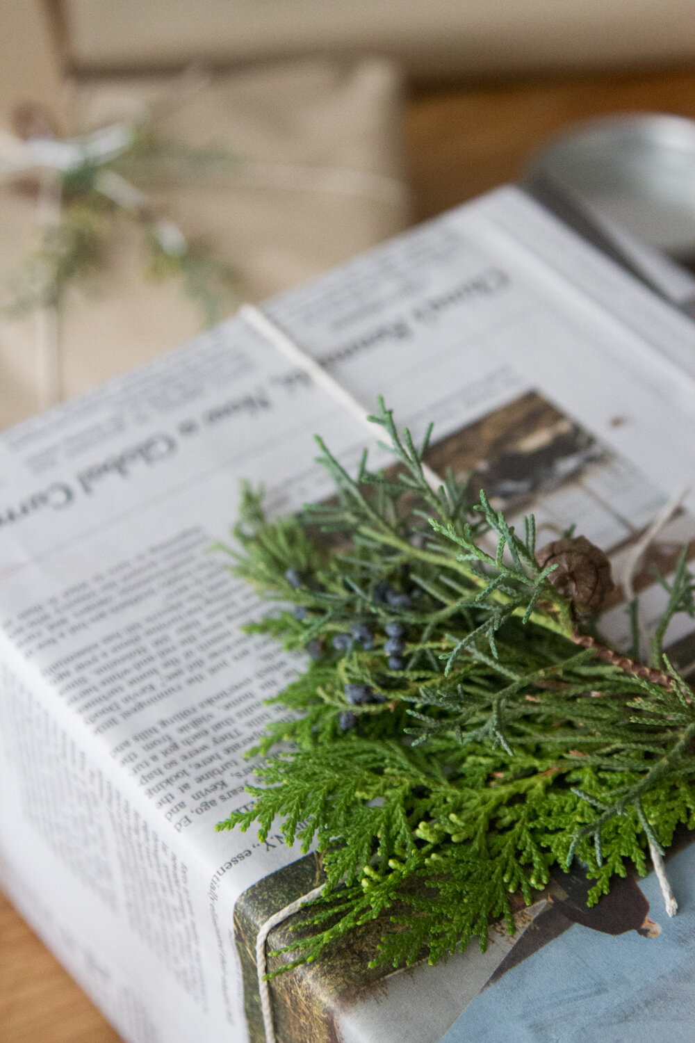 recycled_gift_wrap_reading_my_tea_leaves_IMG_1883