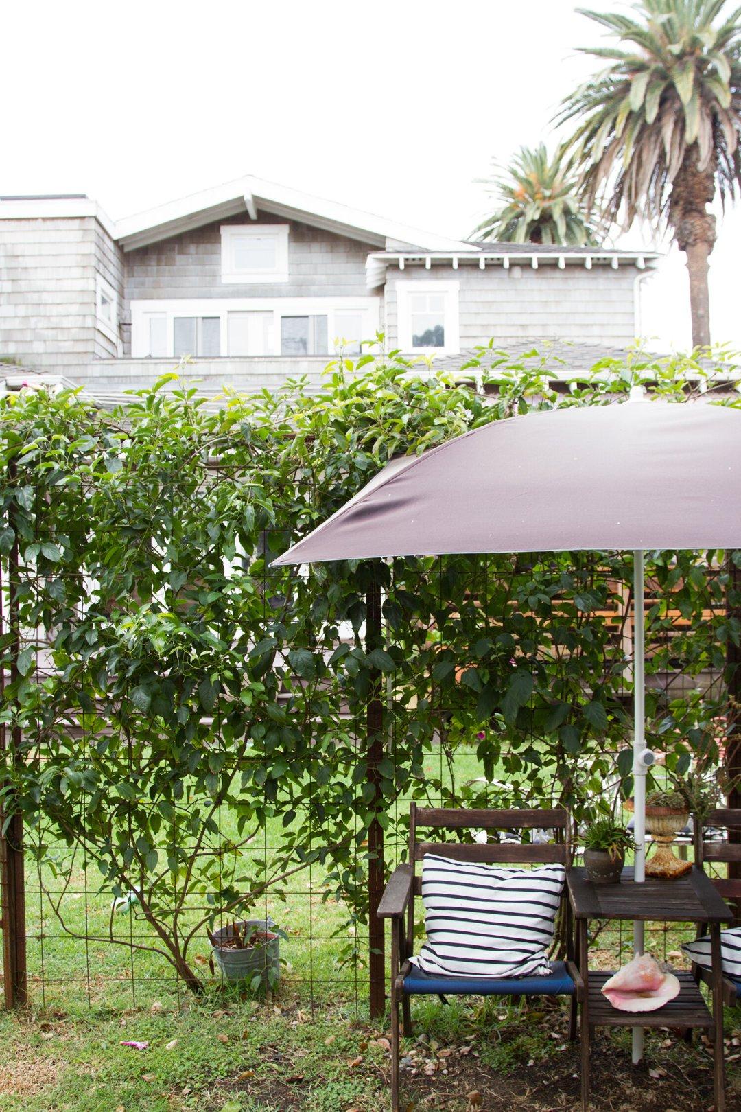 craftsman mini-me: venice, california | reading my tea leaves