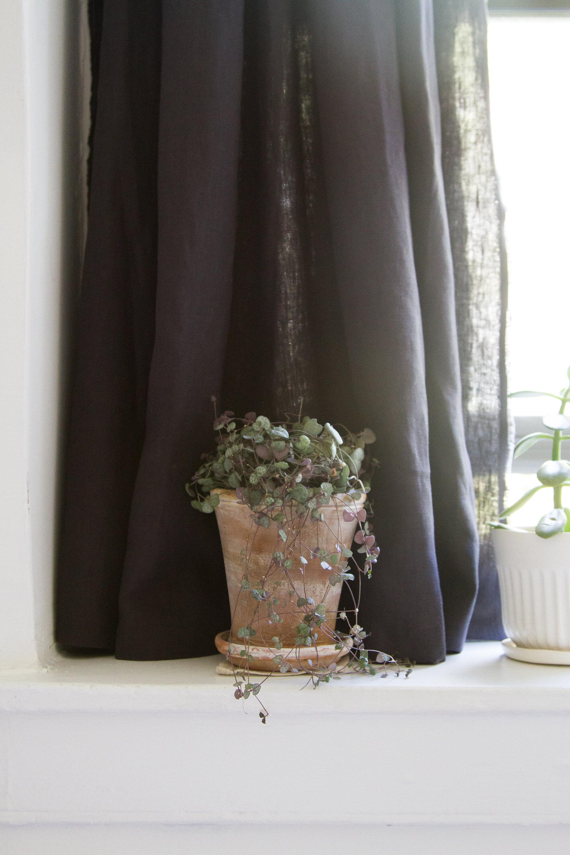 nursery blackout curtain reading my tea leaves