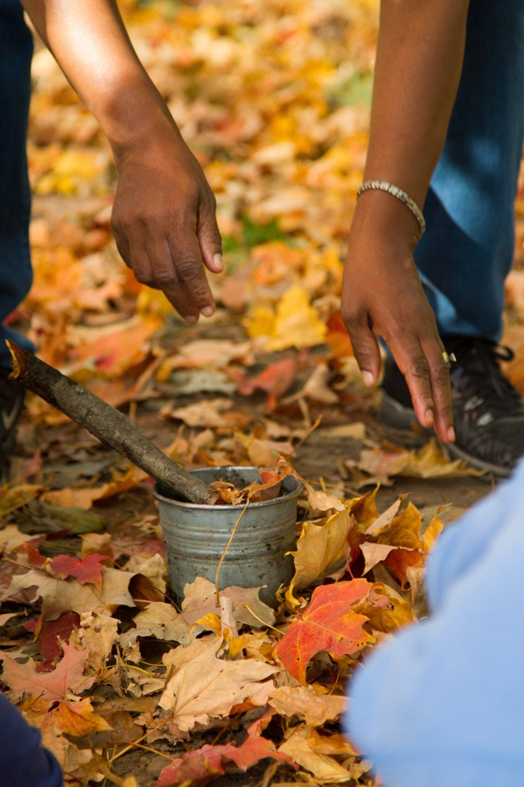 simple matters with joylynn holder of brooklyn forest school | reading my tea leaves